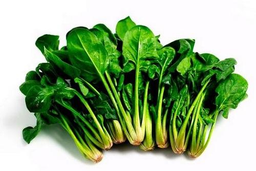 spinach-than-duoc-cua-popeye-than-duoc-cua-ba-bau