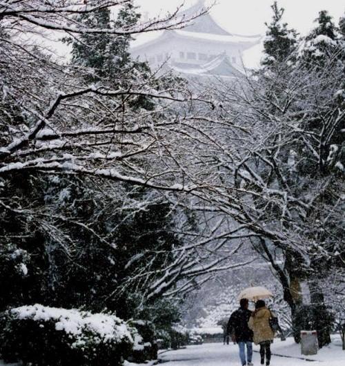 Sự lạnh lùng của người Nhật – Ra đường sợ đụng mặt người quen