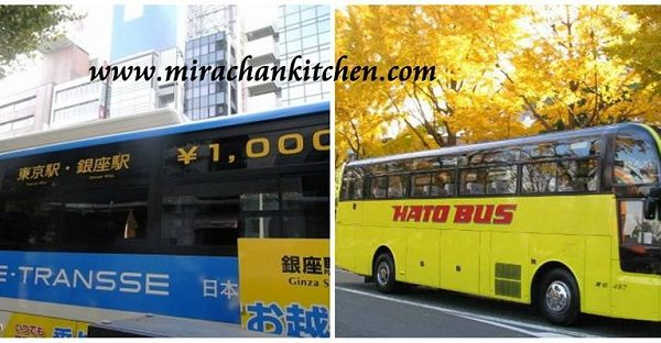 1000 yen Bus và Hato bus