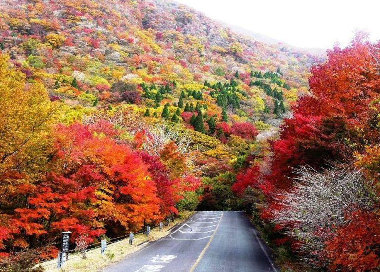 Kuju Mountains