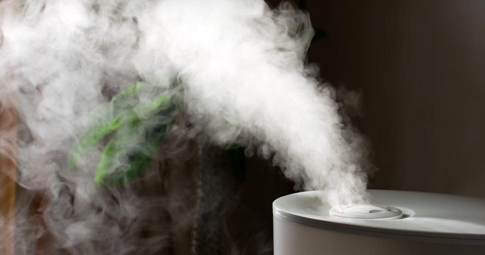 tăng độ ẩm trong nhà