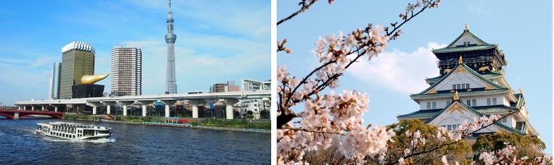 ngắm cảnh tại tokyo và osaka