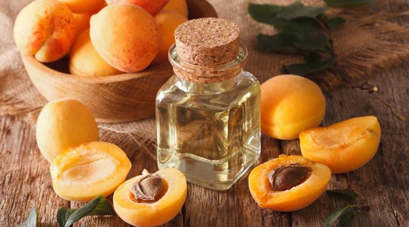 Sự khác biệt giữa dầu hoa trà Tsubaki với những loại dầu dưỡng da khác – Mira Chan&039s kitchen