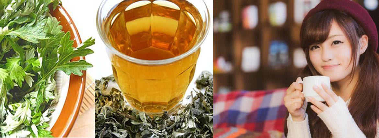 uống trà yomogi