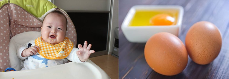 cho trẻ ăn dặm với trứng