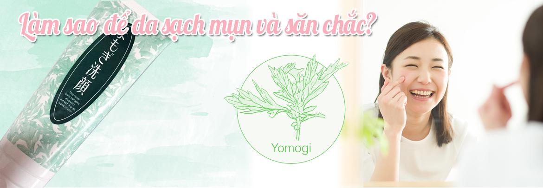ngải cứu yomogi