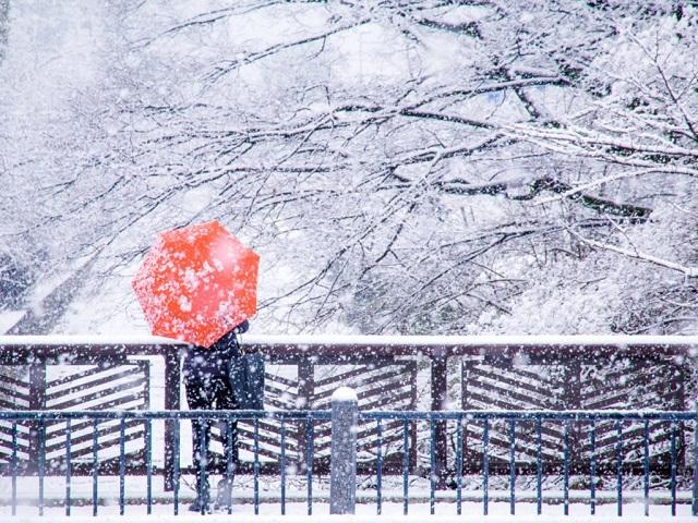 mùa đông ở Kyoto