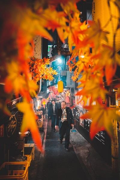 Những hình ảnh mùa thu Nhật Bản đẹp như tranh - Phần 2
