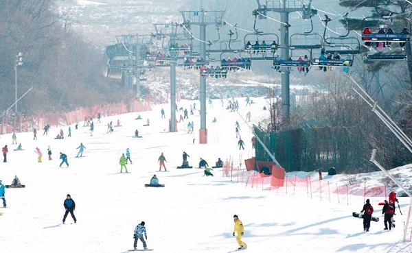 Đi trượt tuyết ở Nhật
