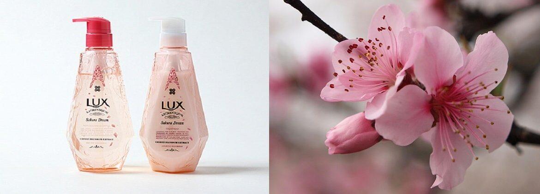 dầu gội Lux Sakura Luminique