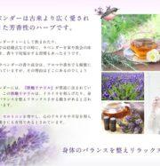Viên uống khử mùi của Nhật