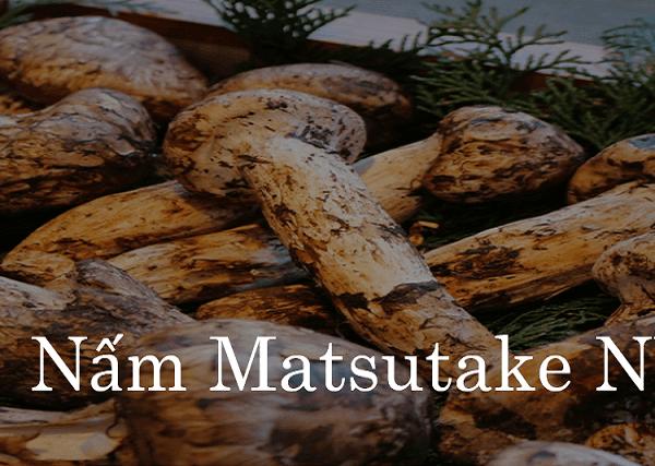 Cơm nấm Matsutake